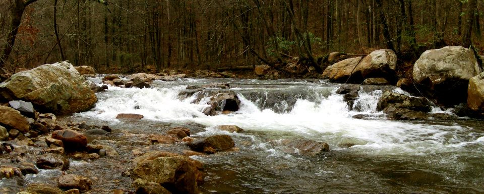 Stony Brook (Fishing Creek)