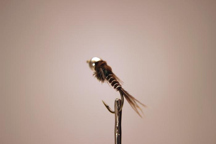 flies3